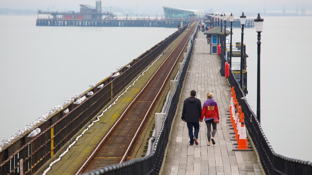 Southend Pier showing a bridge as well as a couple