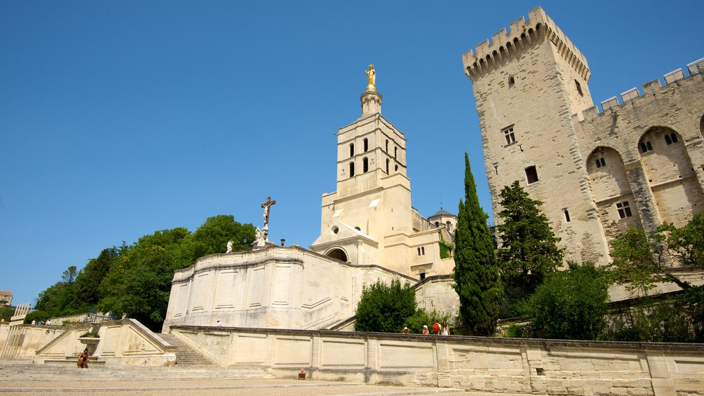 Avignon Cathedral showing heritage architecture, a church or cathedral and religious elements
