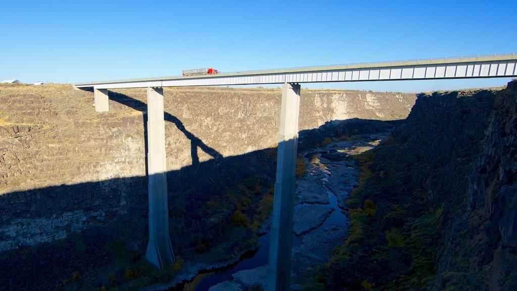Twin Falls ofreciendo un puente y un río o arroyo