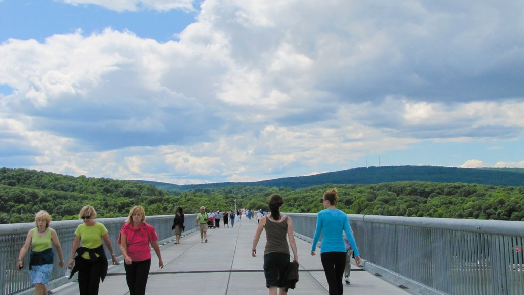 Poughkeepsie which includes a bridge and hiking or walking as well as a small group of people