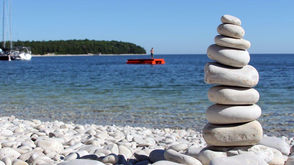 Door Peninsula showing tropical scenes and a pebble beach