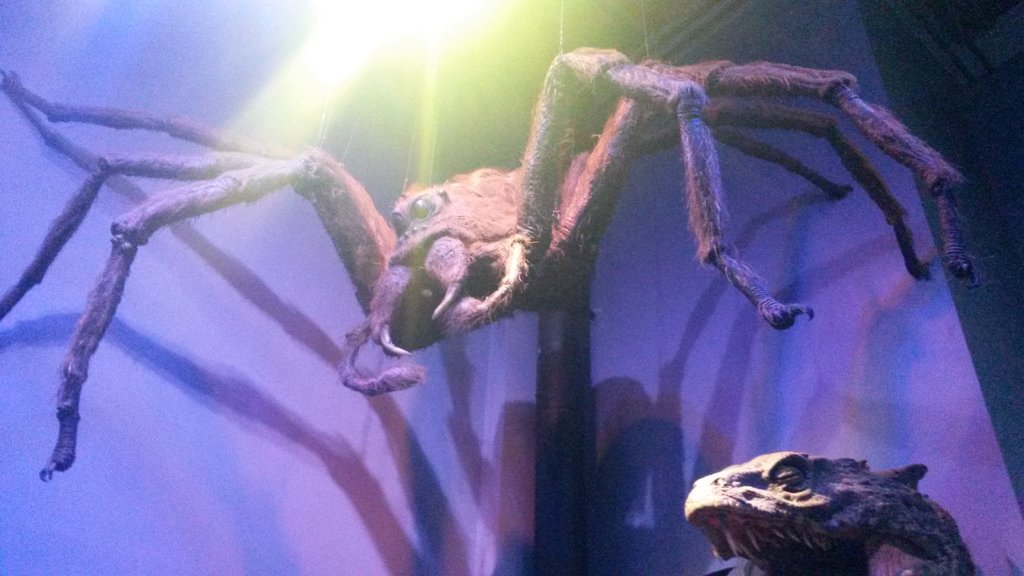 Harry Potter Studio Tour Aragog
