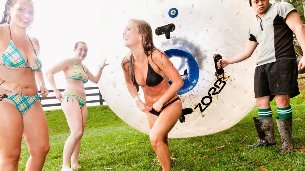 Zorb as well as a small group of people