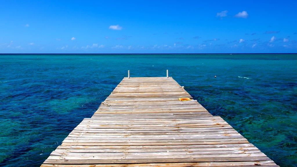 Montego Bay which includes general coastal views
