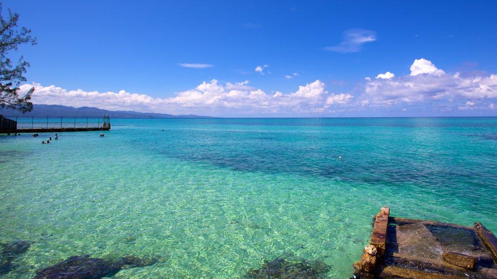 Bahía Montego que incluye vistas generales de la costa y escenas tropicales