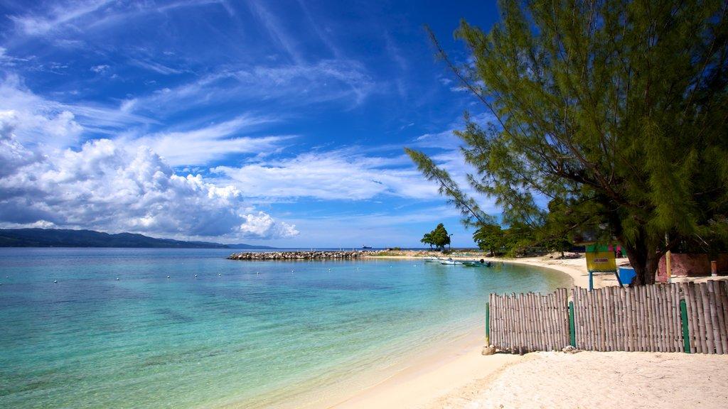 AquaSol Theme Park featuring general coastal views, a beach and tropical scenes