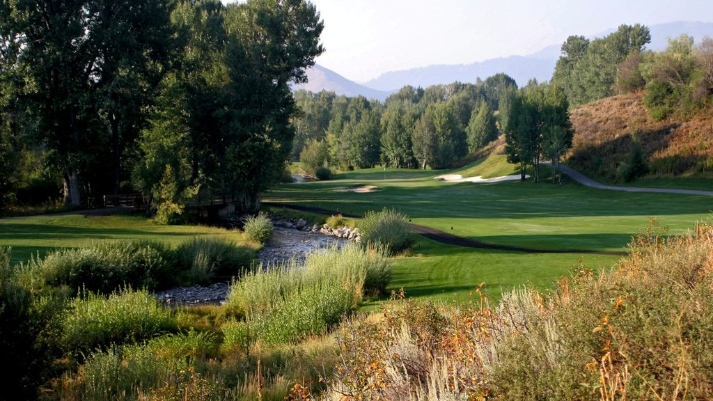 Sun Valley which includes a river or creek and golf