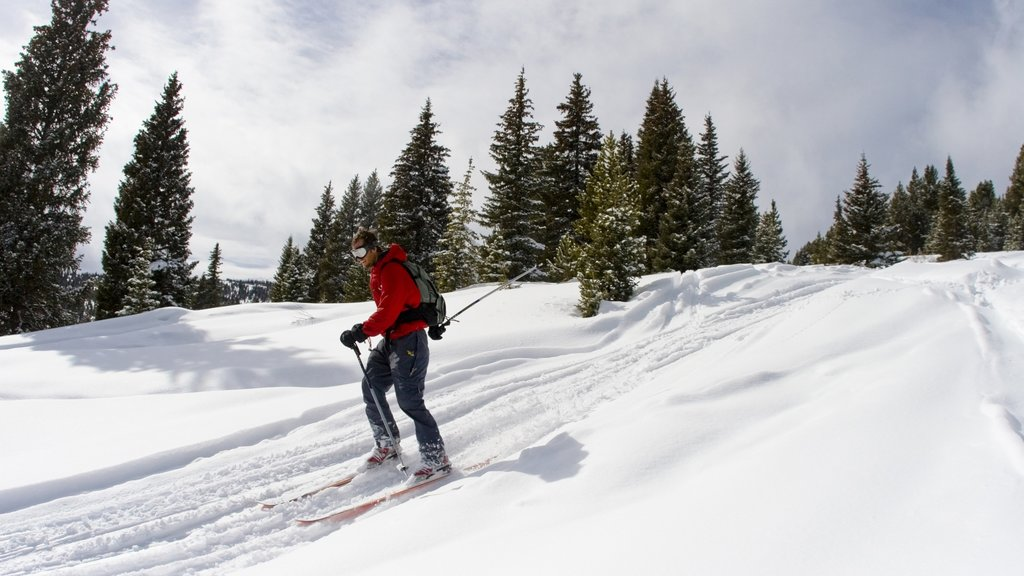 Vail Ski Resort showing cross country skiing and snow as well as an individual male