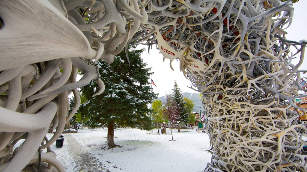 Jackson Hole featuring snow, a park and outdoor art