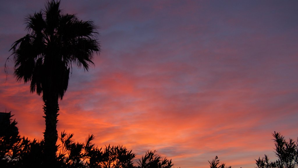 Bullhead City featuring a sunset