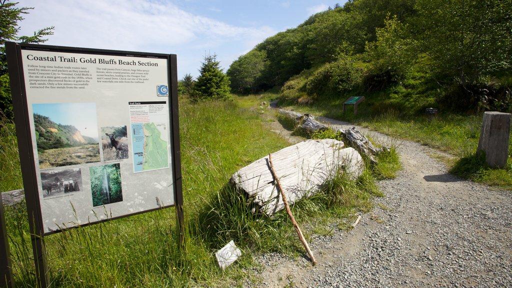 Parque nacional y parques estatales de Redwood mostrando señalización y escenas tranquilas