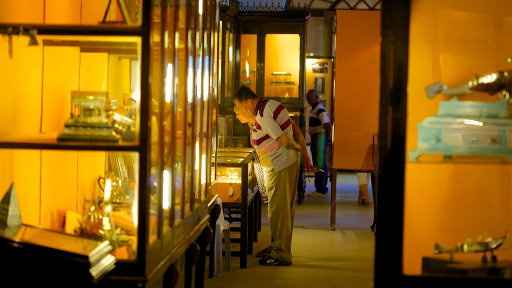 The Nizam\'s Museum which includes interior views as well as a couple