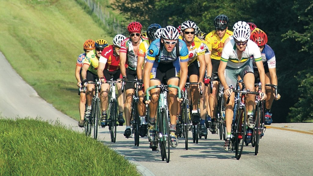 Gainesville which includes a sporting event and road cycling as well as a large group of people