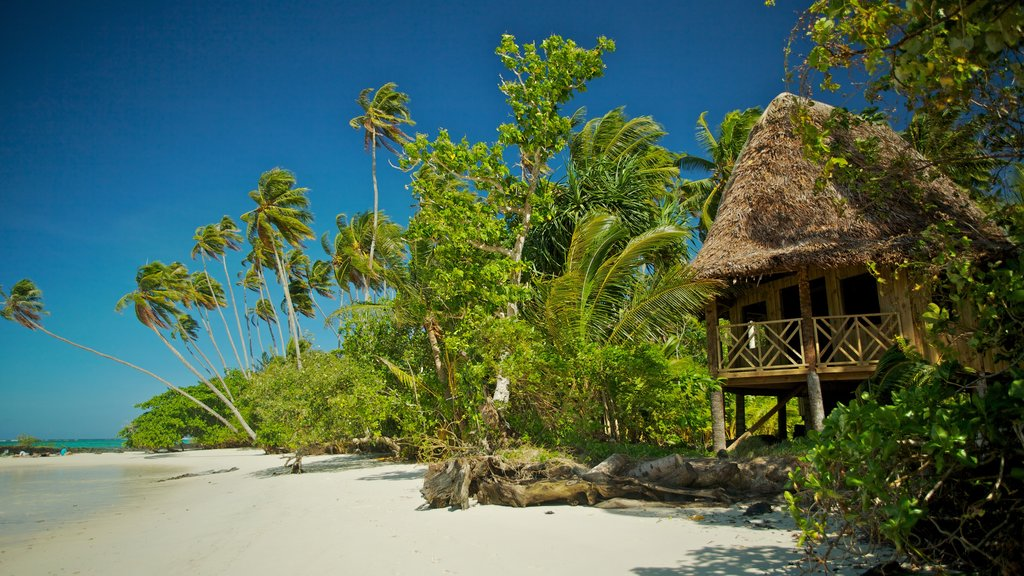 Upolu which includes a sandy beach and tropical scenes