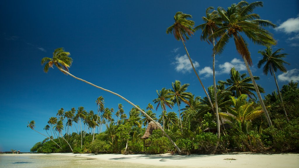 Upolu showing a sandy beach and tropical scenes