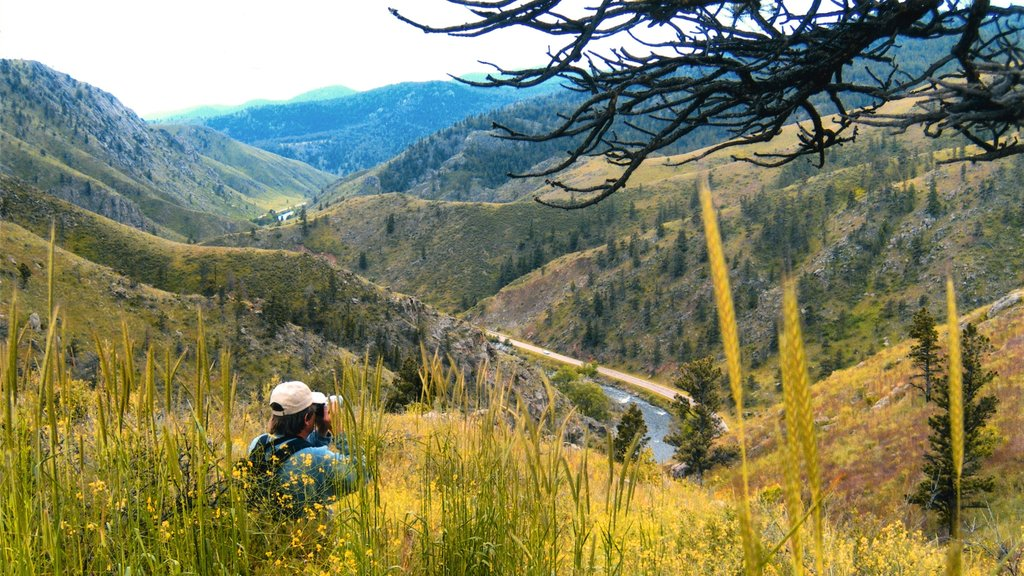 Fort Collins featuring tranquil scenes, landscape views and hiking or walking