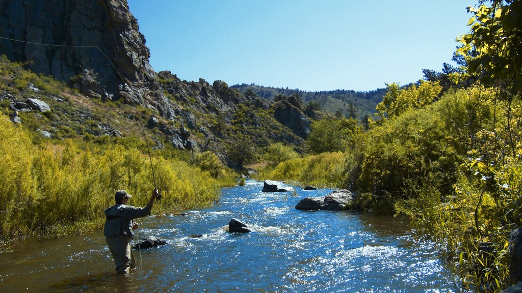 Fort Collins featuring a river or creek, tranquil scenes and fishing