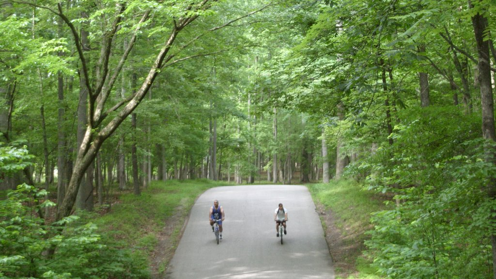 Newport News featuring a garden, forest scenes and cycling