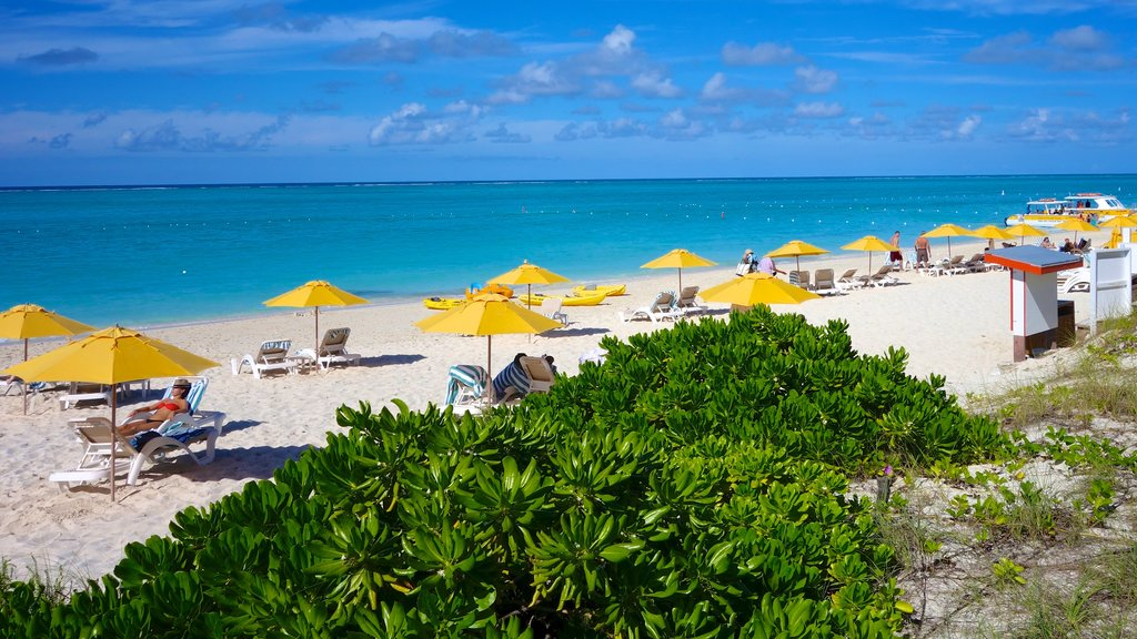 Grace Bay showing a beach and tropical scenes