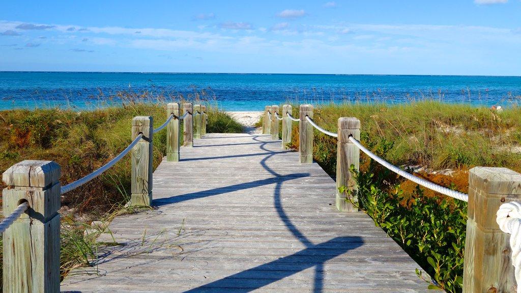 Grace Bay featuring a bridge and a beach