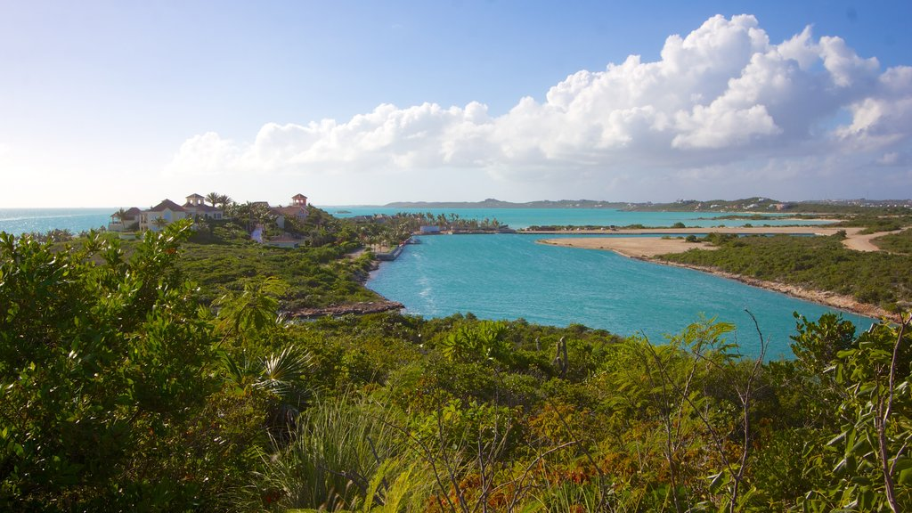 Turks and Caicos which includes a sandy beach, general coastal views and a luxury hotel or resort