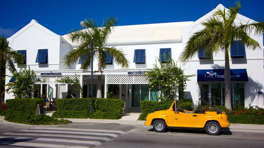 Providenciales showing street scenes