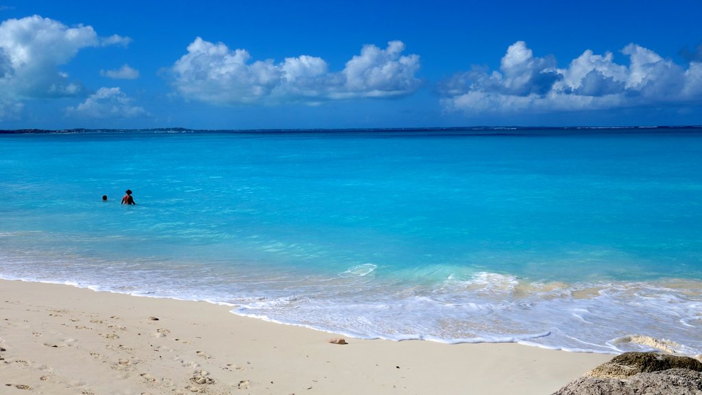 Turks and Caicos featuring a beach and landscape views