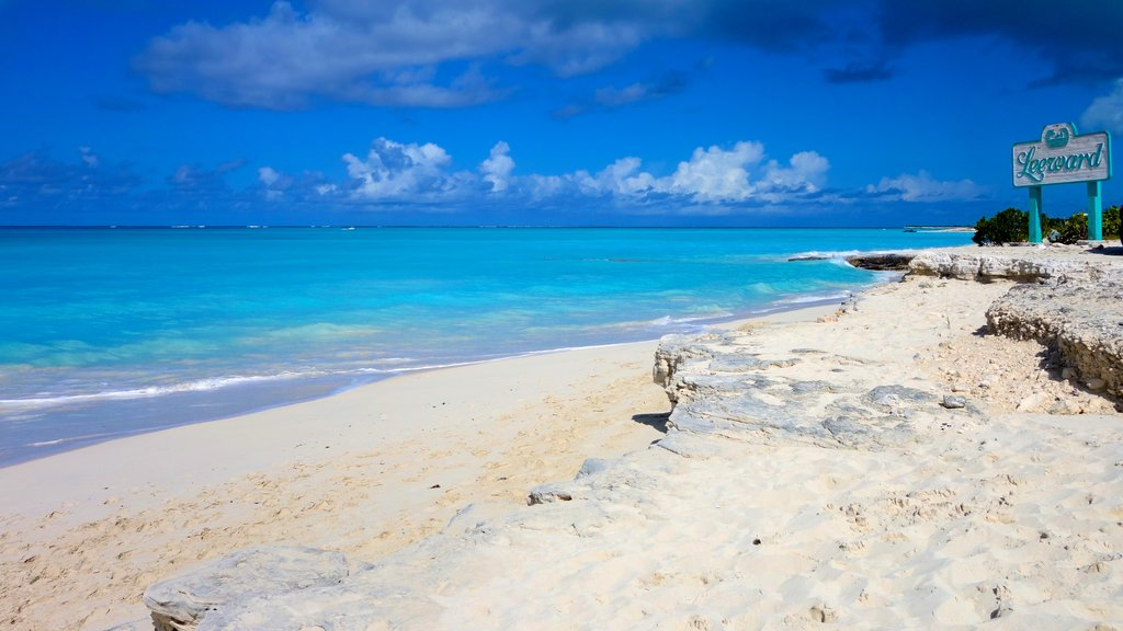 Turks and Caicos featuring signage, tropical scenes and rugged coastline