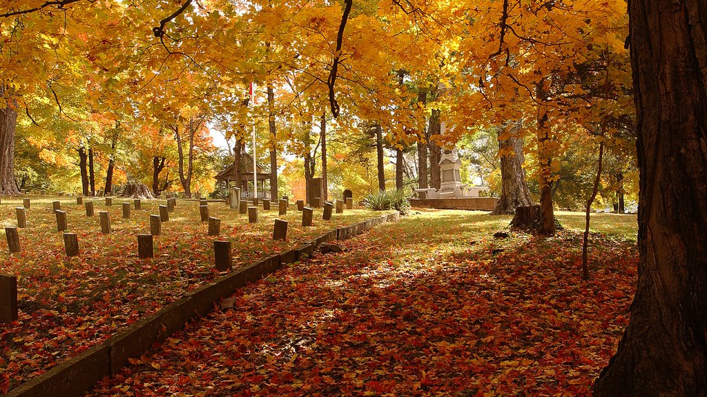 Bentonville - Fayetteville featuring a park, a cemetery and fall colors
