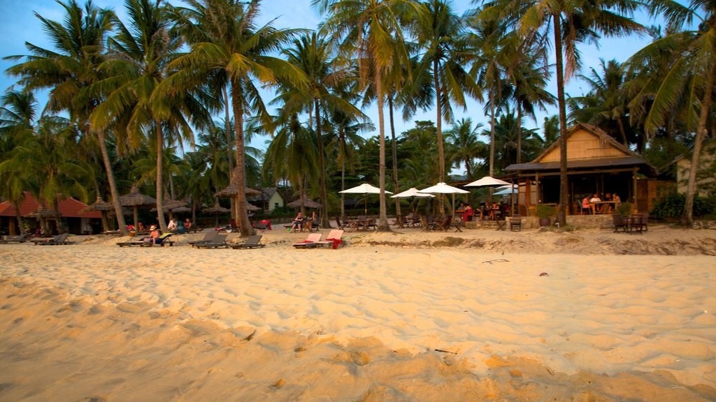 Phu Quoc Beach showing tropical scenes and a sandy beach