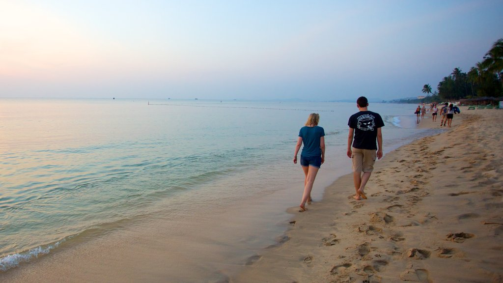 Phu Quoc Beach featuring a sandy beach and tropical scenes as well as a couple