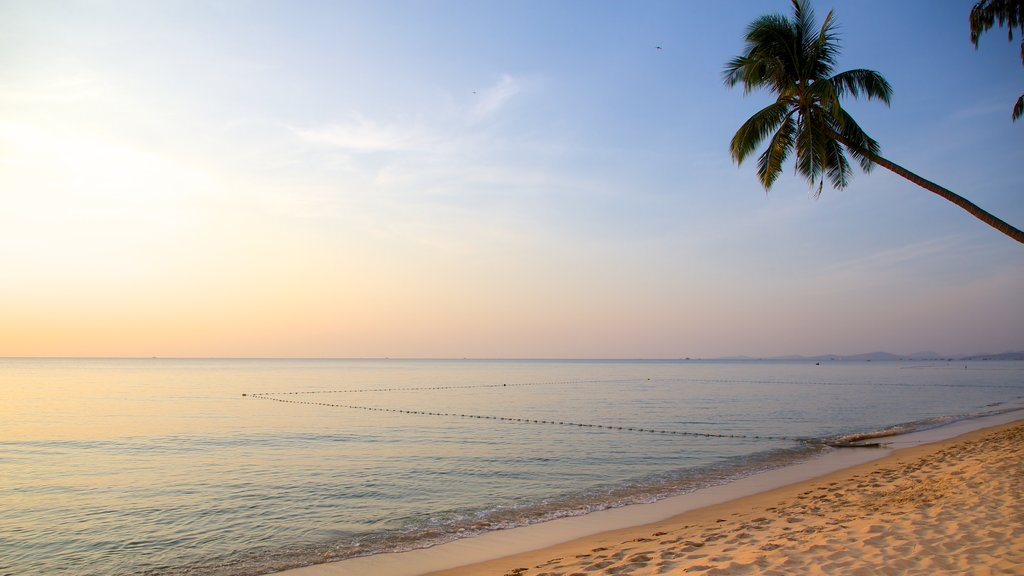 Phu Quoc Beach featuring landscape views, tropical scenes and a sandy beach