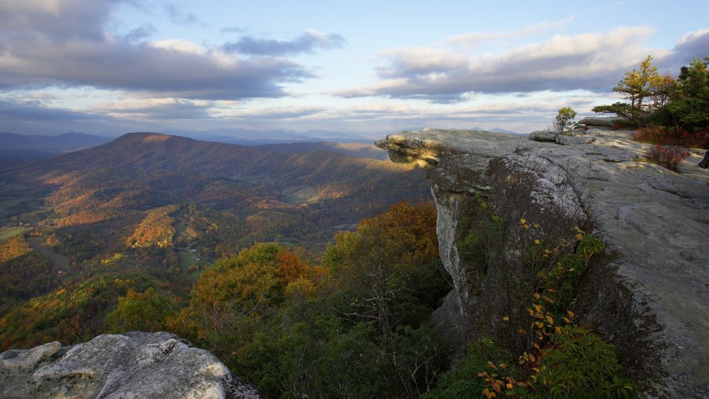 Roanoke which includes landscape views, forests and tranquil scenes
