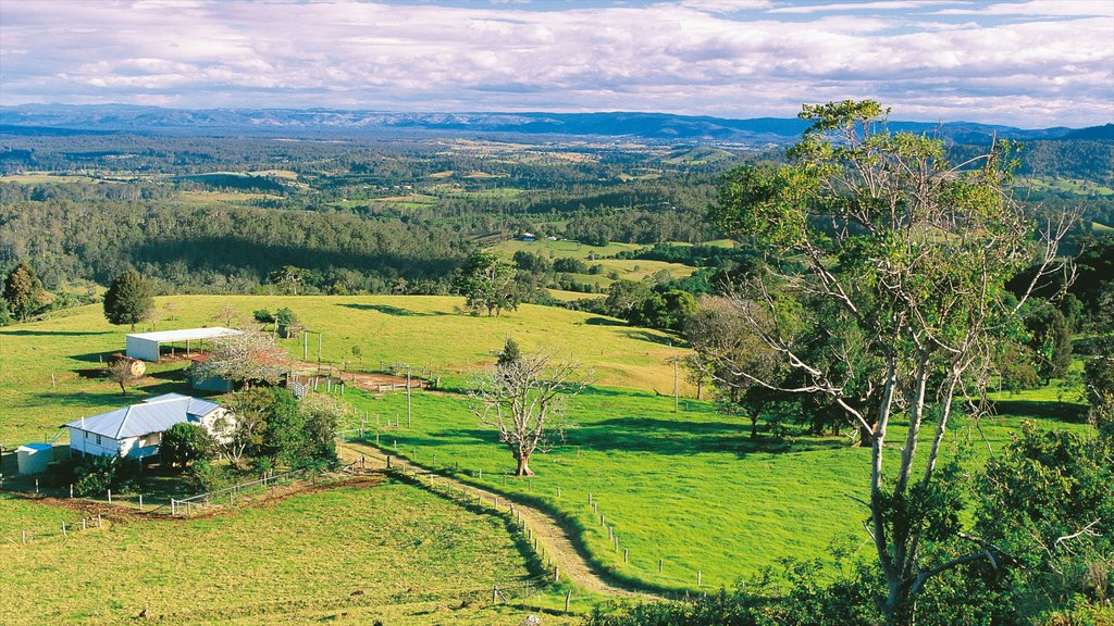 Maleny which includes farmland, a house and tranquil scenes