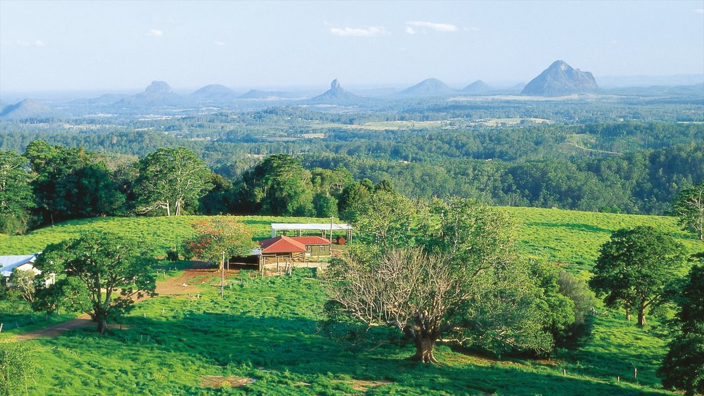 Maleny featuring farmland, landscape views and tranquil scenes