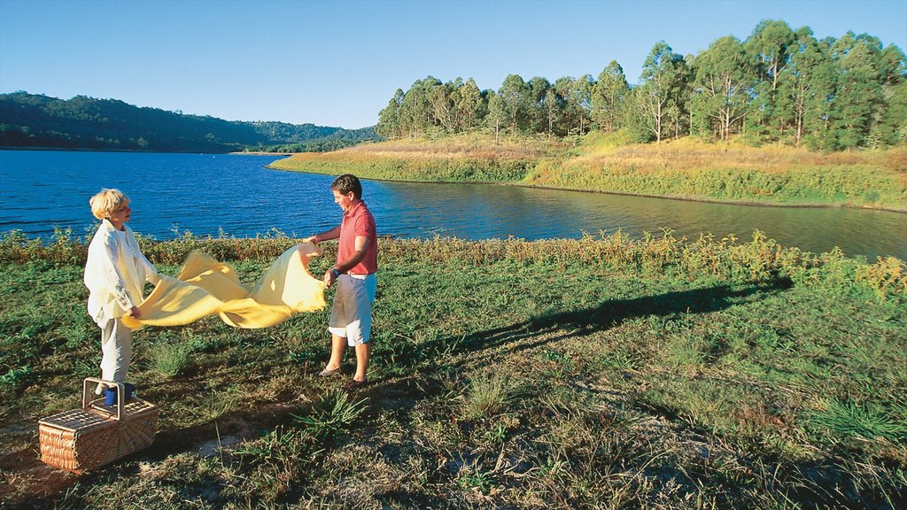 Maleny featuring tranquil scenes, picnicing and a lake or waterhole
