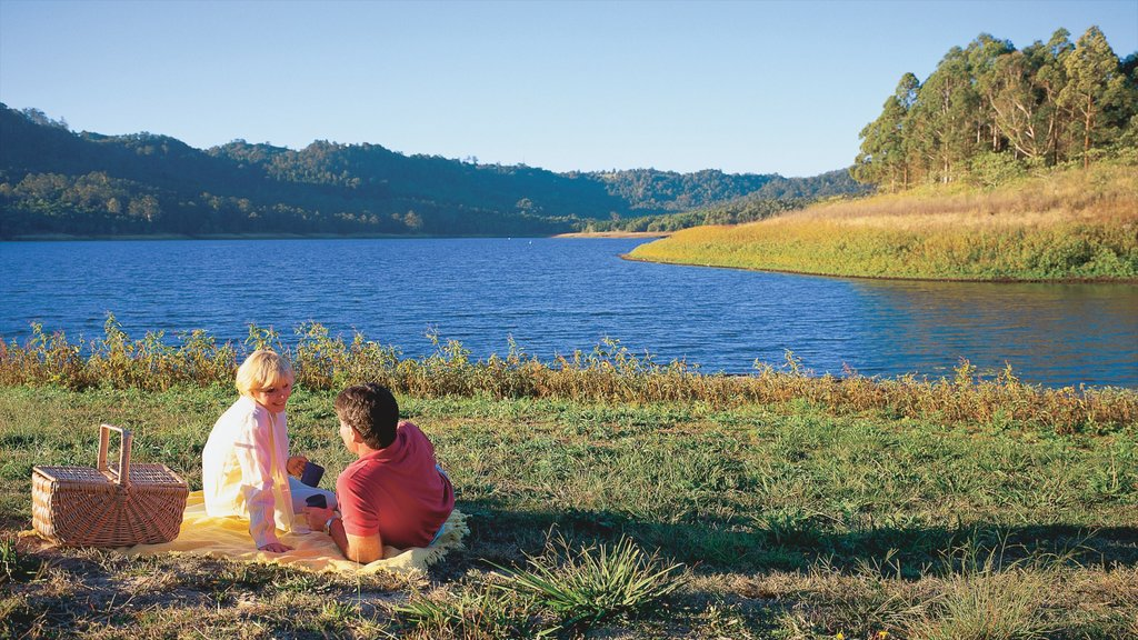 Maleny which includes picnicing, a lake or waterhole and tranquil scenes