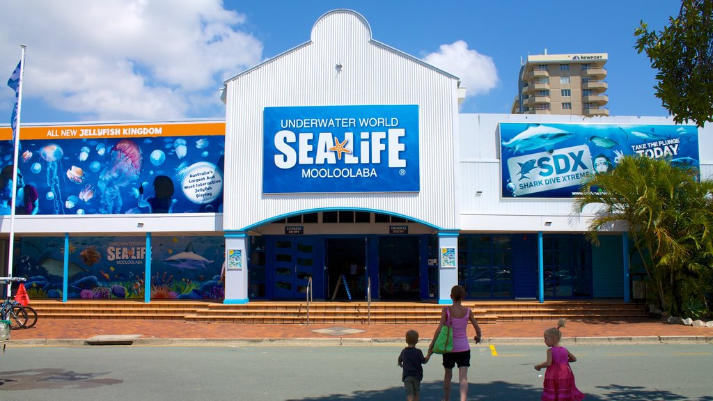 Underwater World Sea Life showing signage and marine life as well as a family