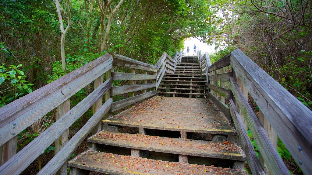 John D. MacArthur Beach State Park featuring a bridge and a garden