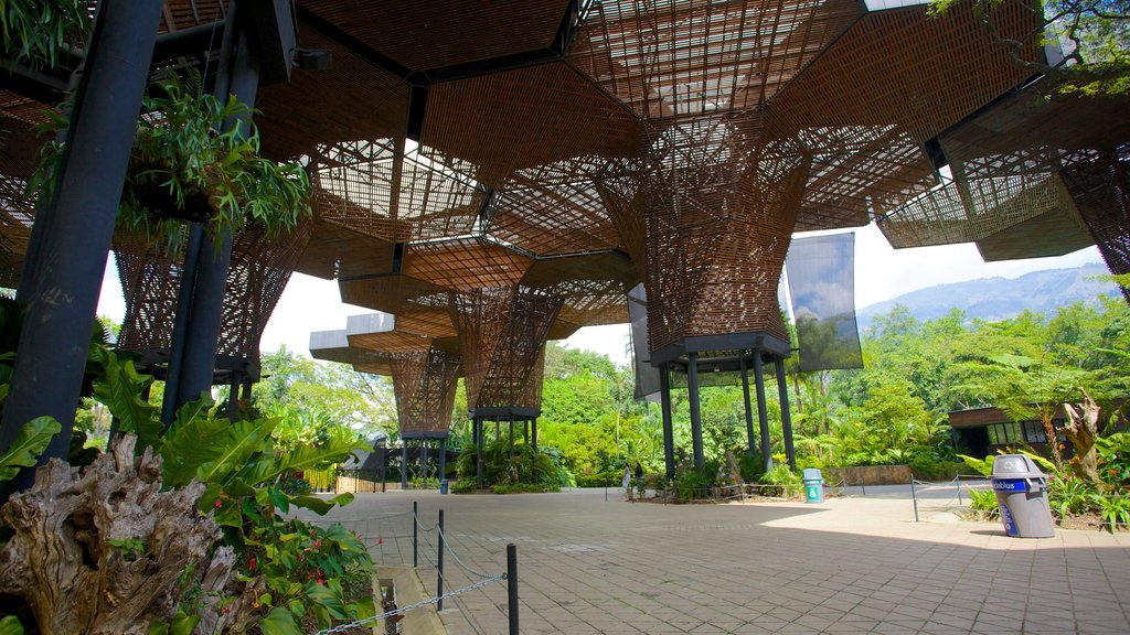 Joaquin Antonio Uribe Botanical Garden which includes modern architecture and a park