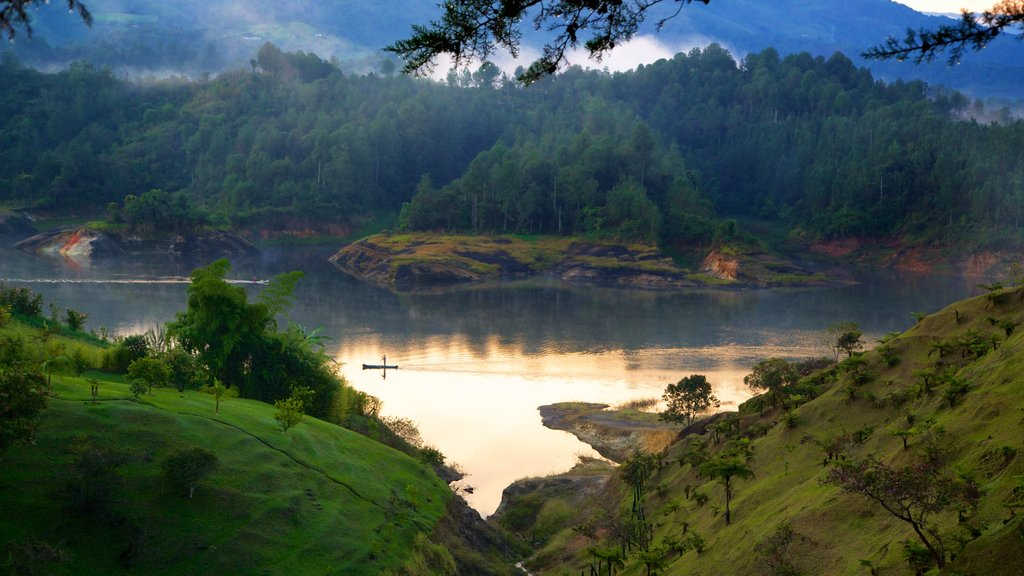Rock of Guatape which includes tranquil scenes, forests and a river or creek