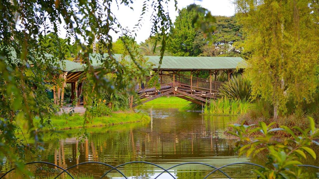Bogota Botanical Garden which includes a pond, a park and a bridge