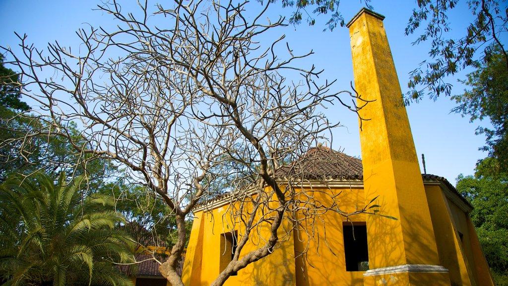 Quinta de San Pedro Alejandrino featuring heritage elements