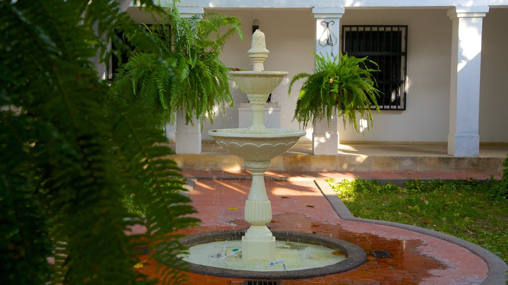 Quinta de San Pedro Alejandrino showing a fountain