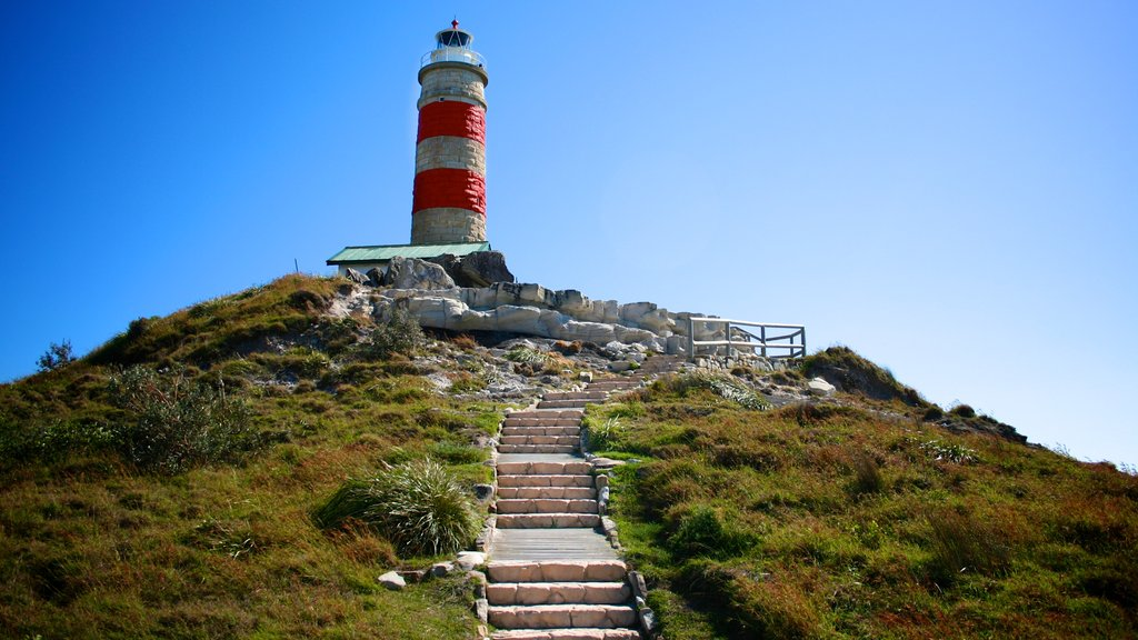 Moreton Island National Park showing a lighthouse