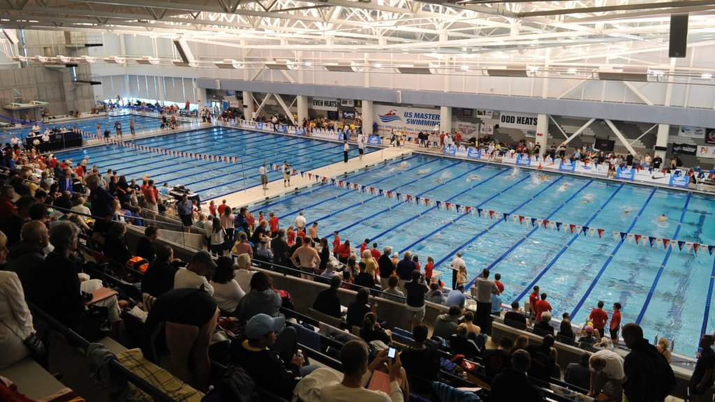 Greensboro showing a pool, a sporting event and interior views