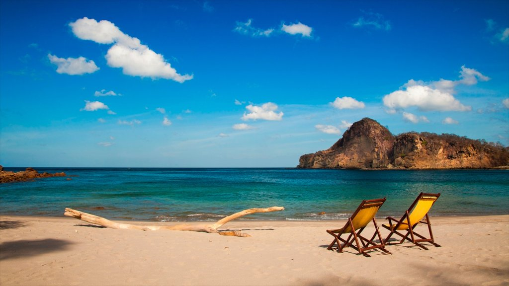 Nicaragua featuring tropical scenes, a sandy beach and rugged coastline