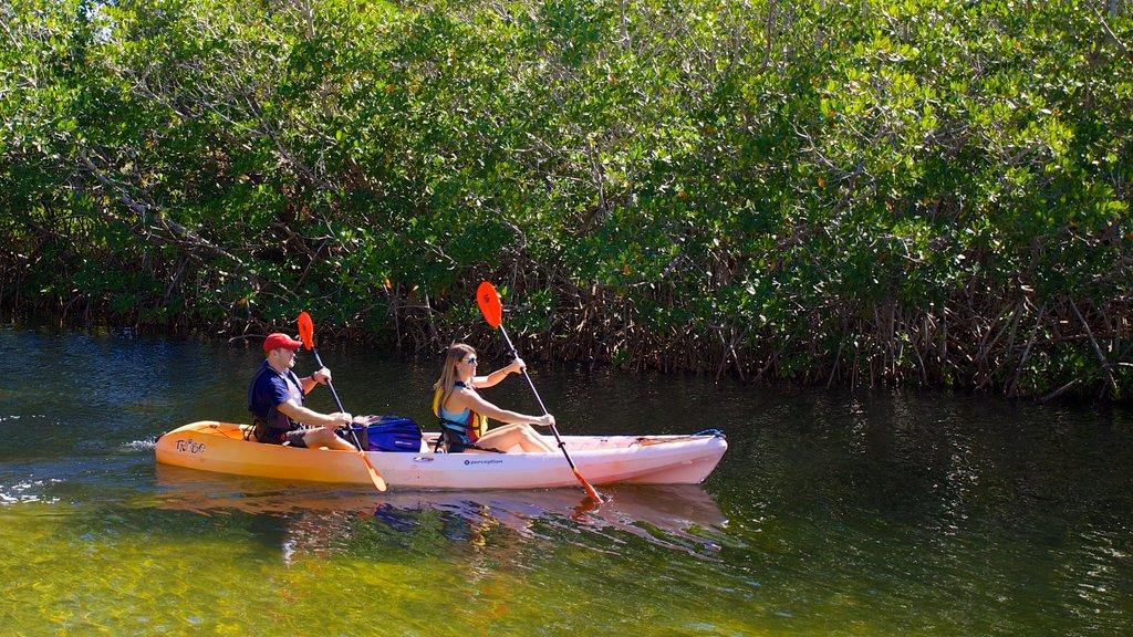 John Pennekamp Coral Reef State Park mostrando um rio ou córrego, caiaque ou canoagem e mangues