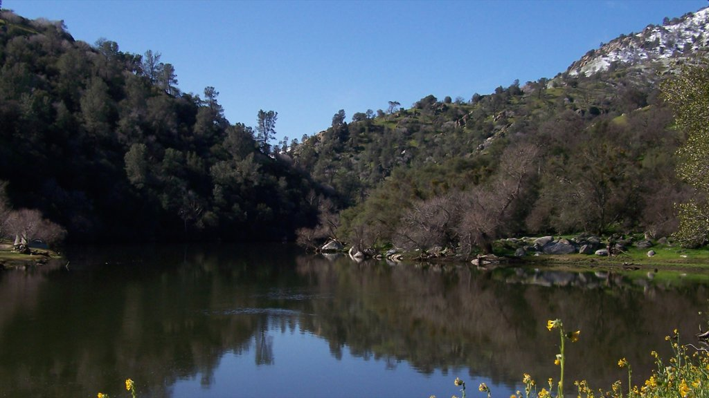 Bakersfield which includes a lake or waterhole and tranquil scenes