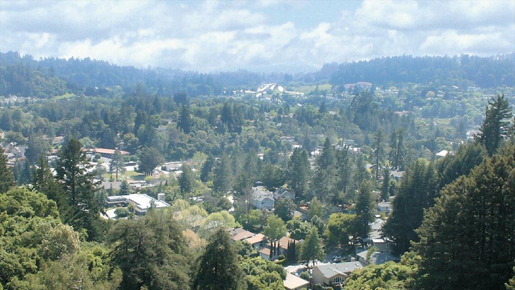 Bay Area mostrando escenas tranquilas, una pequeña ciudad o pueblo y vistas de paisajes